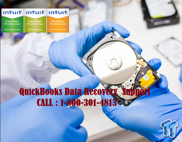 QuickBooks Data Recovery Support